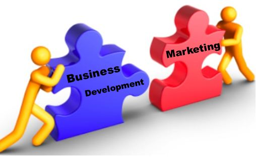 marketing vs. business development